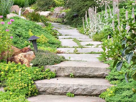B.A. Garden Services1